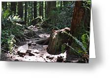 Rocky Trail Greeting Card