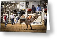 Rodeo High Flyer Greeting Card