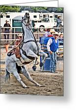 Rodeo Horse Cheers Greeting Card