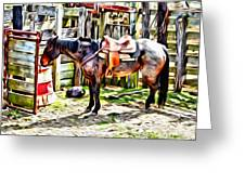 Rodeo Horse Three Greeting Card