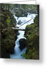 Rogue River Falls 1 Greeting Card