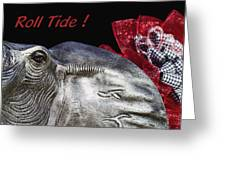 Roll Tide - 14 Time National Champions Greeting Card