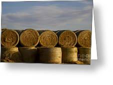 Rolled Hay   #1056 Greeting Card