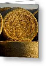 Rolled Hay   #1074 Greeting Card