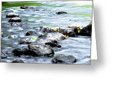 Rolling Brook Greeting Card