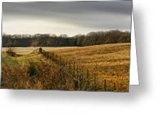 Rolling Field Greeting Card