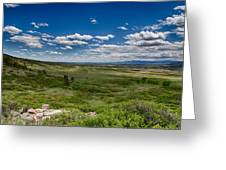 Rolling Hills Greeting Card by Tony Boyajian