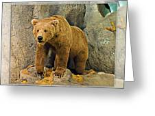 Rolling Hills Wildlife Adventure 2 Greeting Card