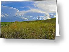 Rolling Pasture Greeting Card