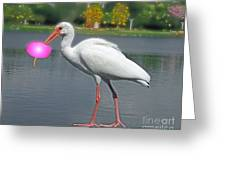 Rolling Roger Stick Ball Greeting Card