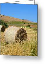 Roll'n The Hay Greeting Card