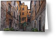 Roman Backyard Greeting Card