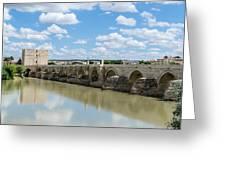 Roman Bridge Of Cordoba Greeting Card
