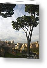 Roman Forum Greeting Card