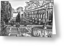 Roman Gardens In The Fall - Bw Greeting Card
