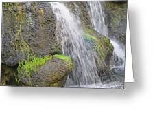 Romancing The Stone Greeting Card