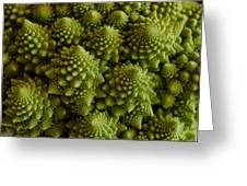 Romanesco Broccoli Close Up Greeting Card
