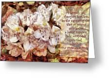 Romans 12 1 Greeting Card