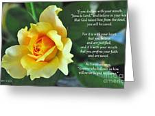 Romans Yellow Rose Greeting Card