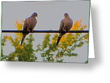 Romantic Moments Greeting Card