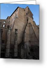 Rome - Centuries Of History And Architecture  Greeting Card by Georgia Mizuleva
