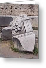 Rome Has Fallen Greeting Card