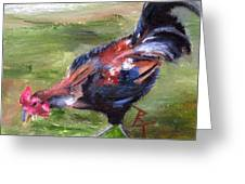 Rooster Aceo Greeting Card