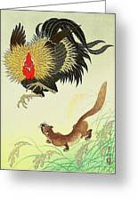 Rooster And Weasel Greeting Card