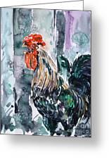 Rooster  Greeting Card by Zaira Dzhaubaeva