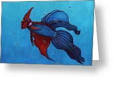 Roosterfish IIi Greeting Card