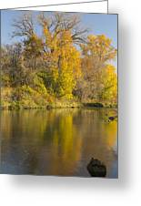 Root River Autumn 1 Greeting Card