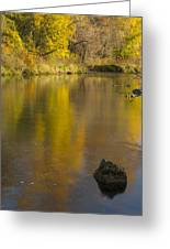 Root River Autumn 2 Greeting Card