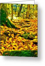Root Steps Greeting Card