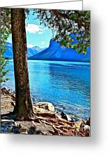 Rooted In Lake Minnewanka Greeting Card