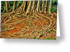 Roots 5 Greeting Card