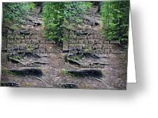 Roots - Cross Your Eyes And Focus On The Middle Image That Appears Greeting Card