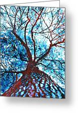 Roots To Branches II Greeting Card