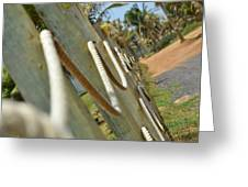 Rope Barrier Greeting Card