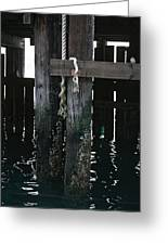 Rope On A Piling Greeting Card