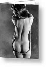 Rope Swing Greeting Card