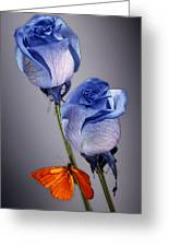 Rosa Azul With Orange Greeting Card