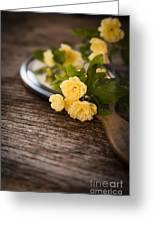 Rosa Banksiae Lutea Greeting Card