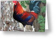 Roscoe The Rooster Greeting Card by Sandra Chase