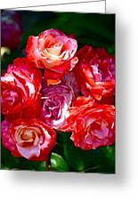 Rose 124 Greeting Card