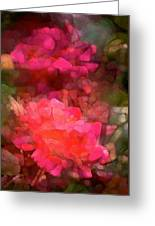 Rose 198 Greeting Card