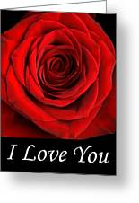 Rose 2 I Love You Greeting Card