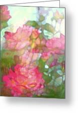 Rose 200 Greeting Card