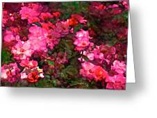 Rose 202 Greeting Card by Pamela Cooper