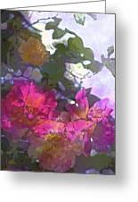 Rose 206 Greeting Card by Pamela Cooper
