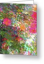 Rose 207 Greeting Card by Pamela Cooper
